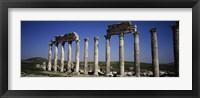 Framed Cardo Maximus Ruins, Apamea, Syria
