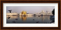 Framed Reflection of a temple in a lake, Golden Temple, Amritsar, Punjab, India