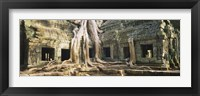 Framed Close up of Old ruins of a building, Angkor Wat, Cambodia