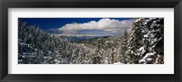 Framed Snow covered pine trees in a forest with a lake in the background, Lake Tahoe, California, USA