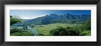 Framed High angle view of taro fields, Hanalei Valley, Kauai, Hawaii, USA