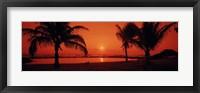 Framed Silhouette of palm trees on the beach at dusk, Lydgate Park, Kauai, Hawaii, USA