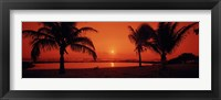 Framed Silhouette of palm trees on the beach at dusk, Lydgate Park, Kauai, Hawaii, USA