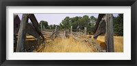 Framed Ranch cattle chute in a field, North Dakota, USA