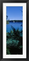 Framed Sailboats in the ocean, Kingdom of Tonga, Vava'u Group of Islands, South Pacific
