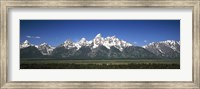 Framed Trees in a forest with mountains in the background, Teton Point Turnout, Teton Range, Grand Teton National Park, Wyoming, USA