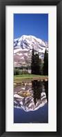 Framed Reflection of a mountain in a lake, Mt Rainier, Pierce County, Washington State, USA