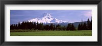 Framed Field with a snowcapped mountain in the background, Mt Hood, Oregon (horizontal)