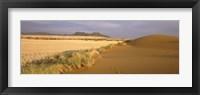 Framed Animal tracks on the sand dunes towards the open grasslands, Namibia