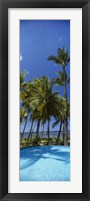 Framed Palm Trees in Maui, Hawaii (vertical)
