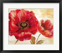 Passion for Poppies I Framed Print