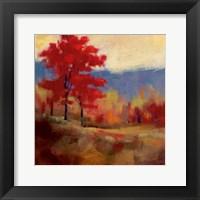 Fall Splendor I Framed Print