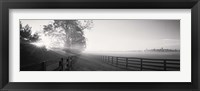 Framed Ranch at dawn, Woodford County, Kentucky, USA