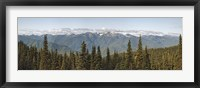 Framed Mountain range, Olympic Mountains, Hurricane Ridge, Olympic National Park, Washington State, USA