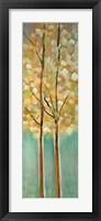 Framed Shandelee Woods I