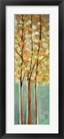 Framed Shandelee Woods II