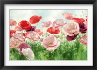 Framed Poppies Pleasure