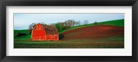 Framed Red Barn in a Field at Sunset, Washington State, USA