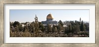 Framed Trees with mosque in the background, Dome Of the Rock, Temple Mount, Jerusalem, Israel