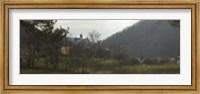 Framed Castle on a hill, Bran Castle, Transylvania, Romania
