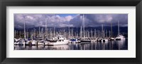 Framed Boats at a harbor, Santa Barbara Harbor, Santa Barbara, California, USA
