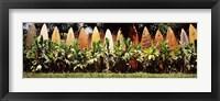 Framed Surfboard fence in a garden, Maui, Hawaii, USA
