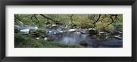 Framed River flowing through a forest, West Dart River, Dartmeet, Devon, England