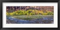 Framed Virgin River at Big Bend, Zion National Park, Springdale, Utah, USA