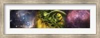 Framed Sunflower in cosmos