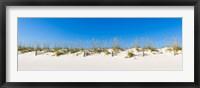 Framed Sand dunes on Gulf Of Mexico, Orange Beach, Baldwin County, Alabama, USA