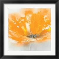 Framed Wild Orange Sherbet I