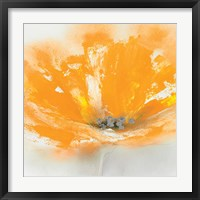 Framed Wild Orange Sherbet I
