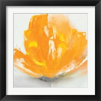 Framed Wild Orange Sherbet II