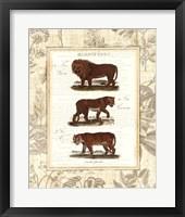 Framed African Animals IV