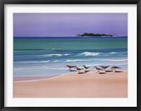 Framed Sand Darlings