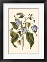 Framed Lavender Floral I