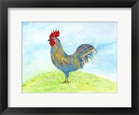 Framed Meadow Rooster