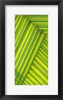 Framed Line Study Green