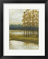 Etoile II Framed Print