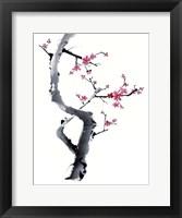 Framed Plum Blossom Branch I