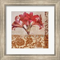Framed Portrait of a Lily