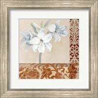 Framed Portrait of a White Lily