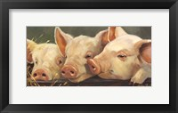 Framed Pig Heaven