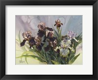 Framed Hadfield Irises IV