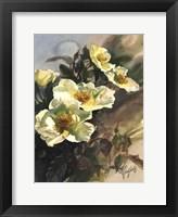 Framed Hadfield Roses I