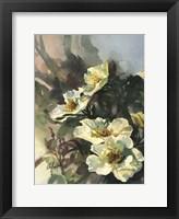 Framed Hadfield Roses II