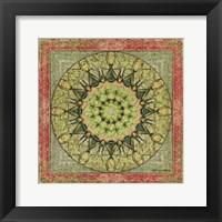 Framed Floress Mandala I