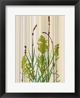 Strip Garden II Framed Print