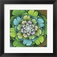 Framed Fractal Blooms I