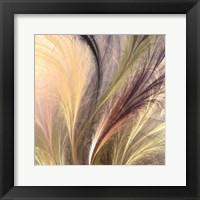 Framed Fountain Grass I